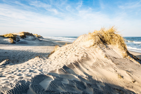 Sand Dunes Along the Outer Banks of North Carolina