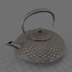 Tetsubin japanese kettle