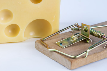 Mousetrap on a white table. Trap with yellow cheese as a bait.