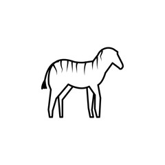 zebra icon. Element of safari for mobile concept and web apps illustration. Thin line icon for website design and development, app development