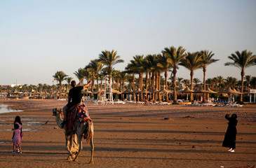 Tourists take a picture with a camel on a beach in the Aqaba Gulf on the Red Sea resort of Sharm el-Sheikh
