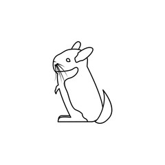 chinchilla icon. Element of rodents icon. Premium quality graphic design icon. Baby Signs, outline symbols collection icon for websites, web design, mobile on white background