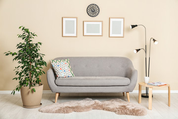 Stylish living room interior with ficus and sofa near light wall