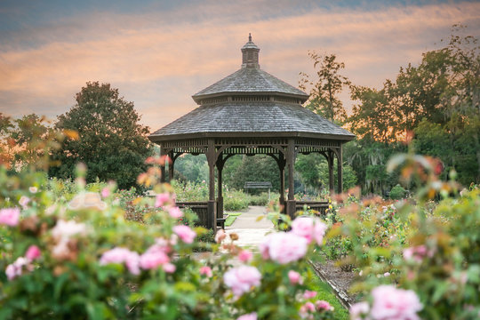 Serene Park Gazebo at Sunset in Rose Garden