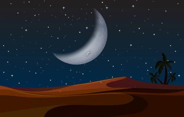 A desert landscape at night