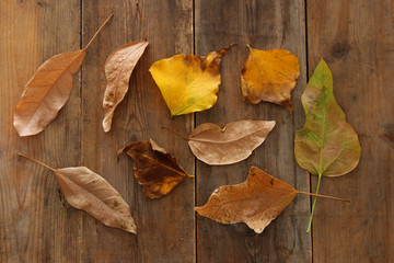 top view image of autumn leaves over wooden textured background.