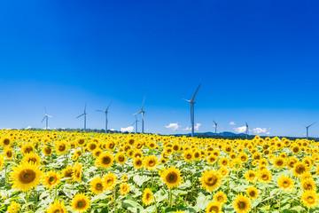 エネルギー・環境イメージ