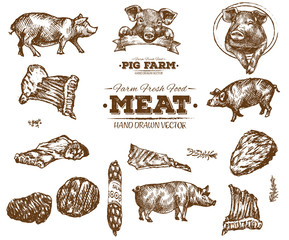 Hand drawn fresh farm meat bbq sketch