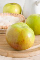 Bramley cooking apples or Malus domestica 'Bramley's Seedling' a popular British variety for making pies and desserts