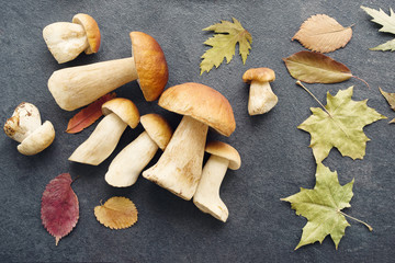 Autumn fresh boletus mushrooms. Forest cepes on a dark surface of a table, close up.