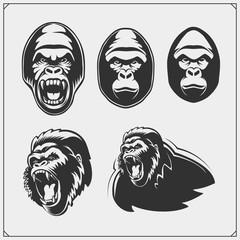 Set of gorilla heads. Vector monochrome illustration.