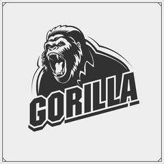 The emblem with gorilla for a sport team.