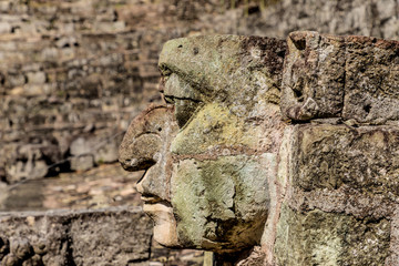 A typical view at Copan Ruins in Honduras.