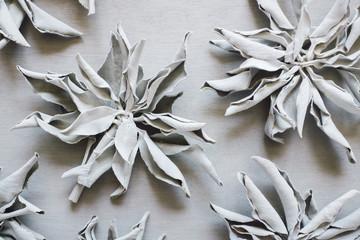 Dried White Sage Wall mural
