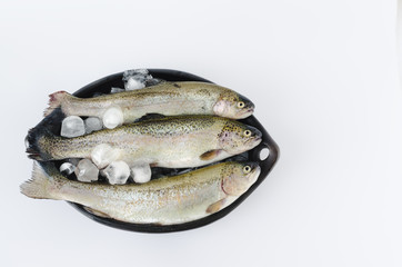 Trouts in black ceramic bowl on white background.
