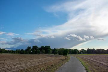 Bauernschaft mit Straße, Bäumen, Feldern und blauem Wolkenhimmel. Standort: Deutschland, Nordrhein - Westfalen