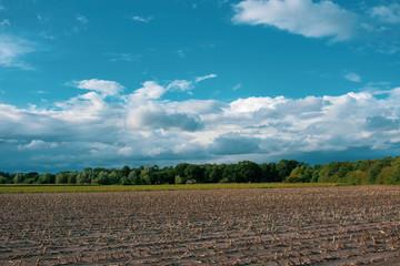 Bauernschaft mit Bäumen, Feldern und blauem Wolkenhimmel