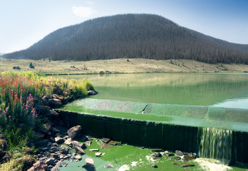 Troutvale Reservoir Number 1, Brown Lakes, Rio Grande National Forest,  Colorado, US