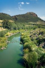 Sous clean creek,  Rio Grande National Forest,  Colorado, US