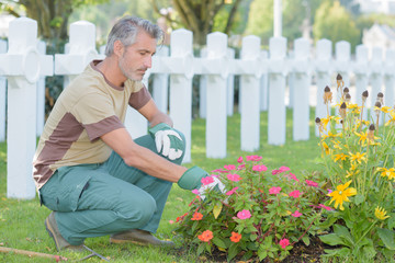 Man tending flowers in graveyard