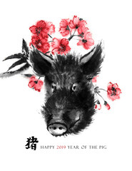 """Pig sumi-e greeting card oriental new year. A boar head and a branch of cherry blossom, Eastern ink wash painting. With Chinese hieroglyph """"pig"""" and text."""