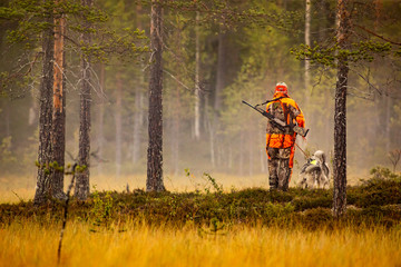 Foto auf Gartenposter Jagd Hunter and hunting dogs chasing in the wilderness