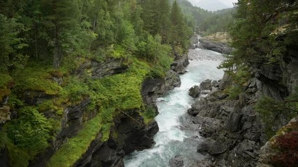 Wall Mural - Norwegian Landscape in Southwestern Norway. Scenic River and the Wilderness