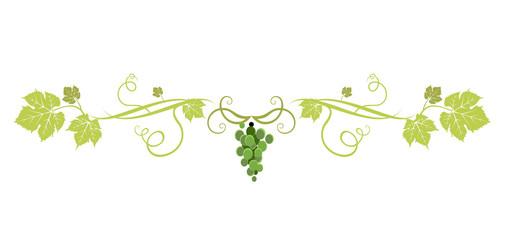 Green grape divider Wall mural