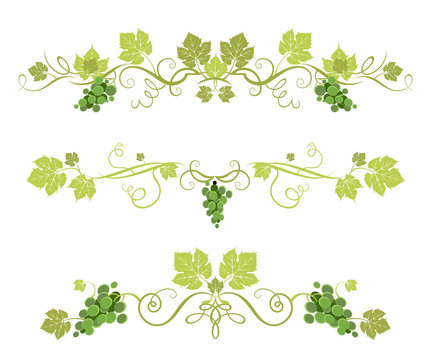 Green grape decor
