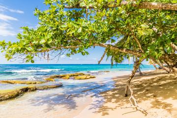 A typical view in Punta uva in Costa Rica