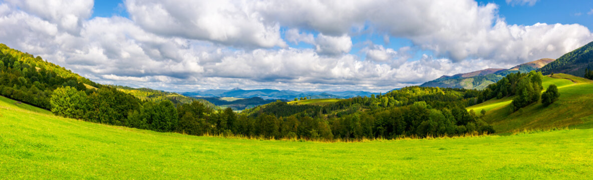 panorama of green alpine meadow in autumn. forested hills and distant mountain ridge in good weather.