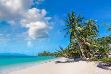 Tropical beach on Samui