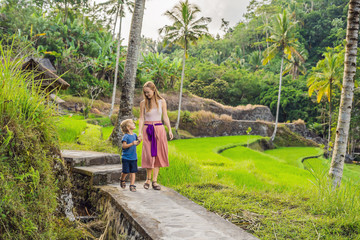 Mom and son on the rice field in the background of rice terraces, Ubud, Bali, Indonesia. Traveling with children concept. Teaching children in practice