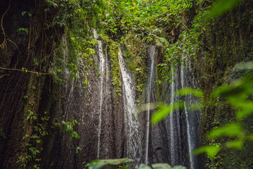 Large waterfalls in green tropical forest focus on waterfall Bali