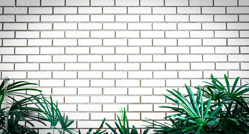 White empty frame of white brick wall decorate with green leaves at ...