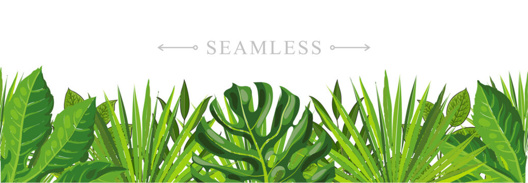 Tropical leaves seamless pattern border frame with space for text. Hand drawn sketch monstera, palm and fern floral decoration for fabric, textile or graphic design. Summer jungle vector background.