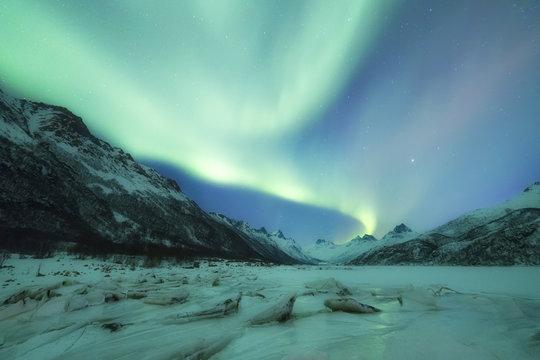 Northern Lights (Aurora borealis) on frozen sea, Olderfjorden, Svolvaer, Lofoten Islands, Nordland