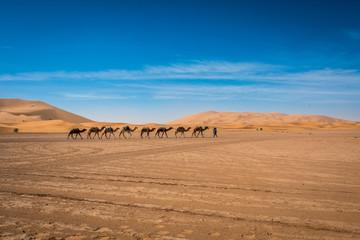Merzouga Desert, Morocco, North Africa, Africa