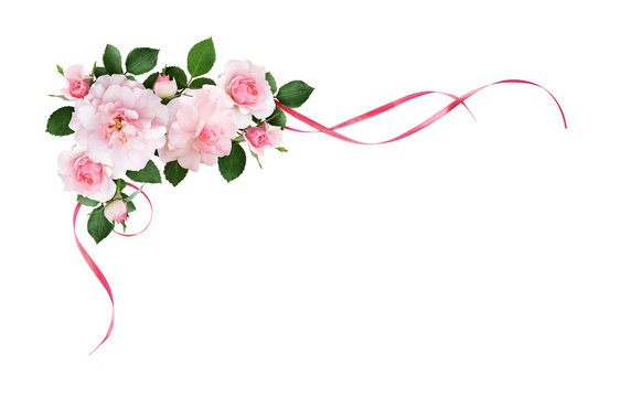 Pink rose flowers and silk waved ribbons in a corner arrangement