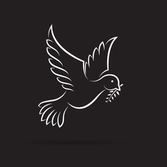 Vector of white dove of peace with olive branch on black background. Bird design. Animals. Easy editable layered vector illustration.