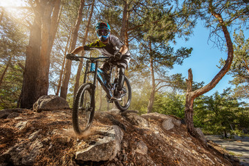 Mountain biker on forest trail. Male cyclist rides the rock Wall mural
