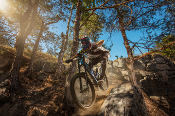Mountain biker on forest trail. Male cyclist rides the rock