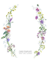 Watercolor summer wreath of wildflowers Botanical colorful illustration