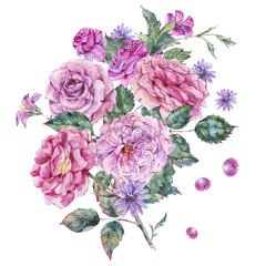 Decorative vintage watercolor pink roses Botanical colorful illustration