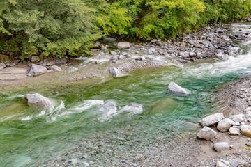 豊富な水が流れる山奥の川
