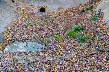 Dry drainage pipe with fallen leaves.