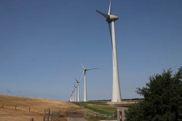 Modern wind turbines in the Noordoostpolder in the Netherlands for sustainable electricity