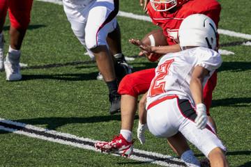 Football  Running back running with football