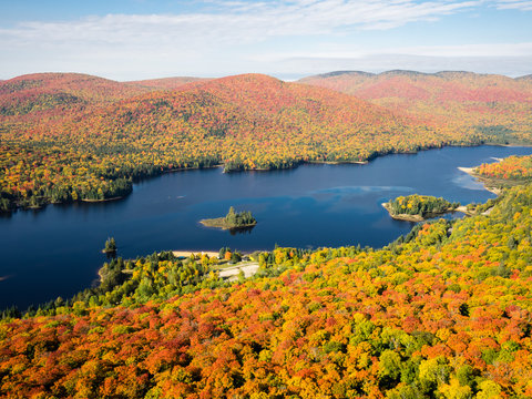 """This is a picture of autumn leaves seen from the National Park """"Mont-Tremblant"""" in the Laurentian Plateau in Quebec, Canada. This is a picture taken from the observation stand of the trail course # 3"""