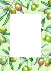 Card template with watercolor olive tree branches with olives and green leaves
